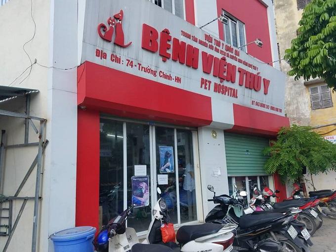 Một số trạm cứu hộ và bệnh viện chó mèo uy tín tại Việt Nam